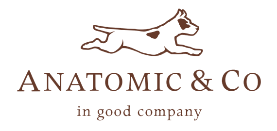 Anatomic & Co by Cresta Holdings