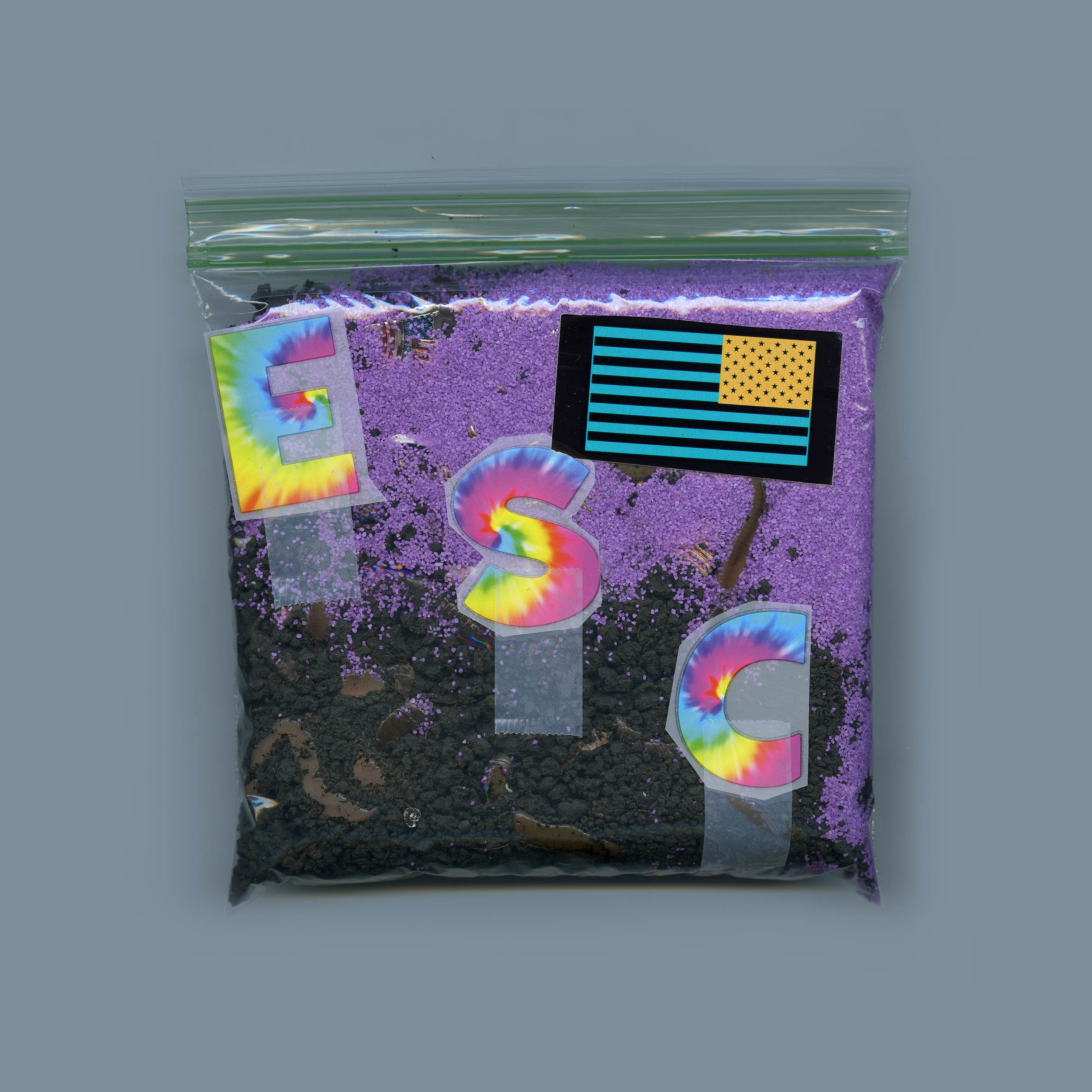 Worm Bag B