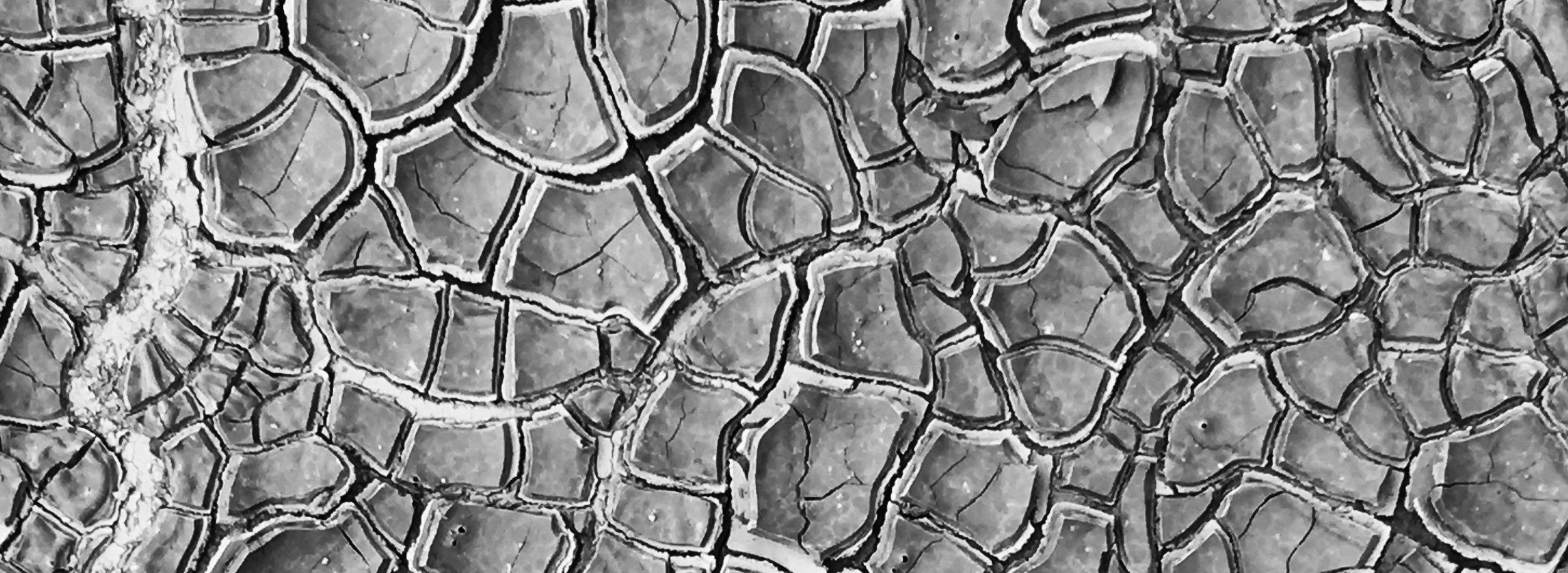 clay pans bn w.jpg