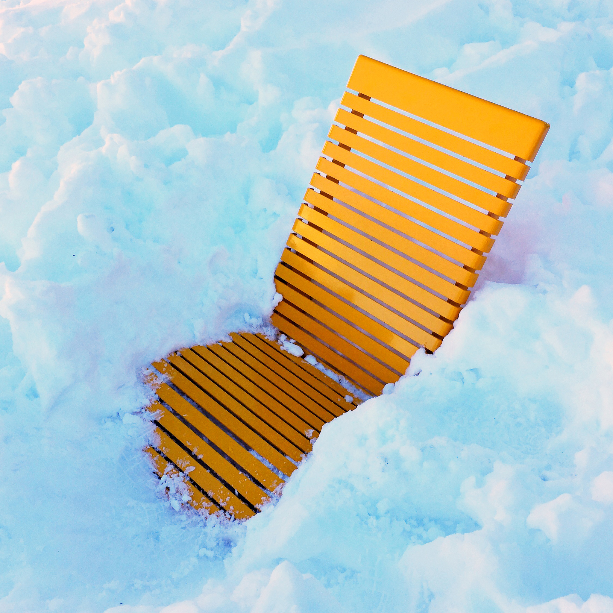 whistler-sunbathe-final.jpg