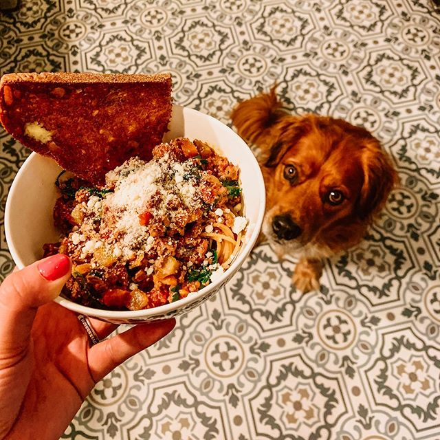 Louie and I agree that first day of fall weather calls for @skinnytaste instant pot bolognese 🐶🍁🍝