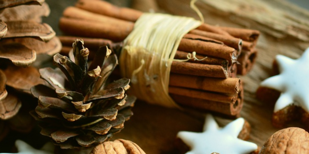 Cinnamon 1.png