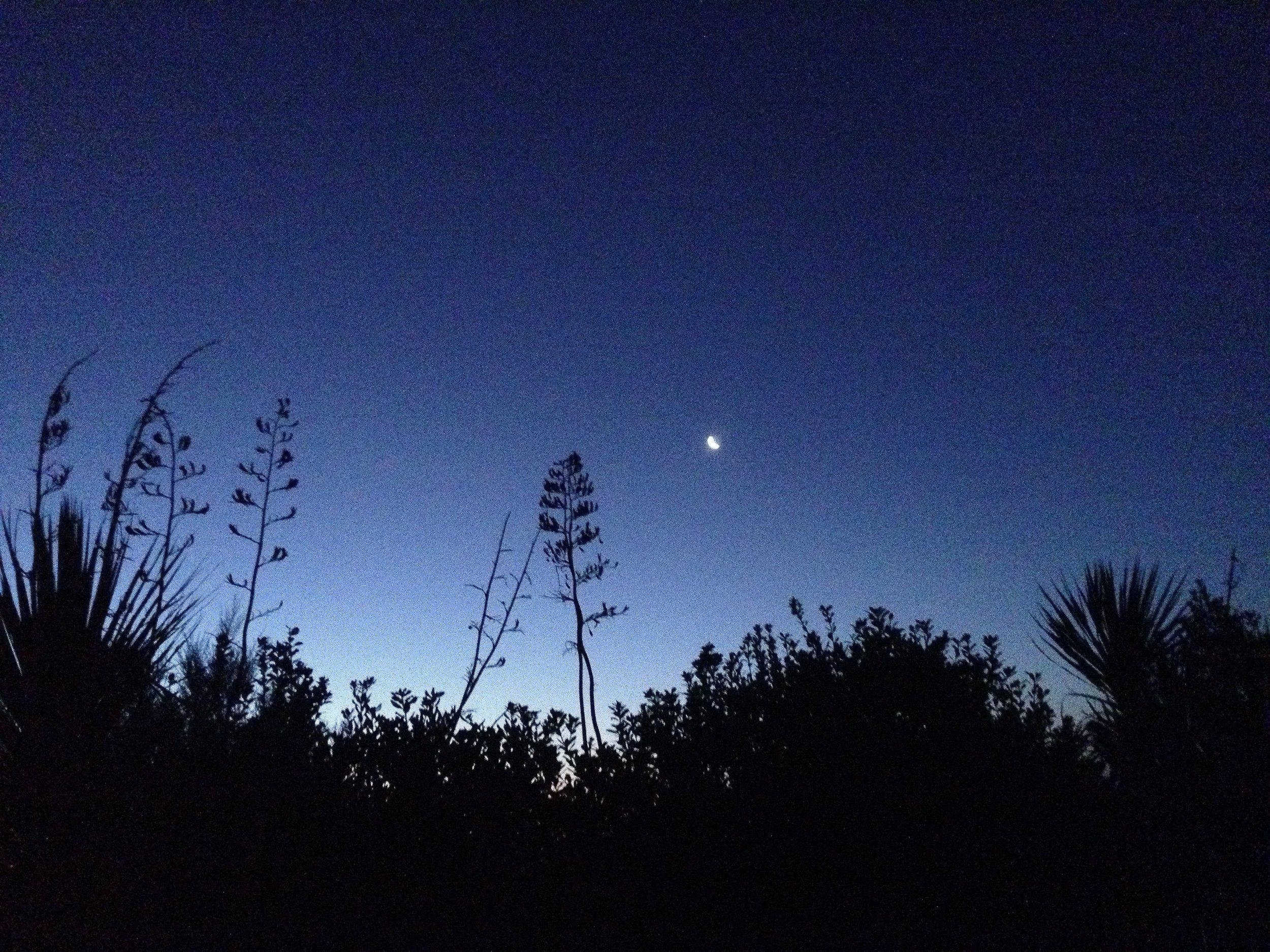 moon shot.JPG