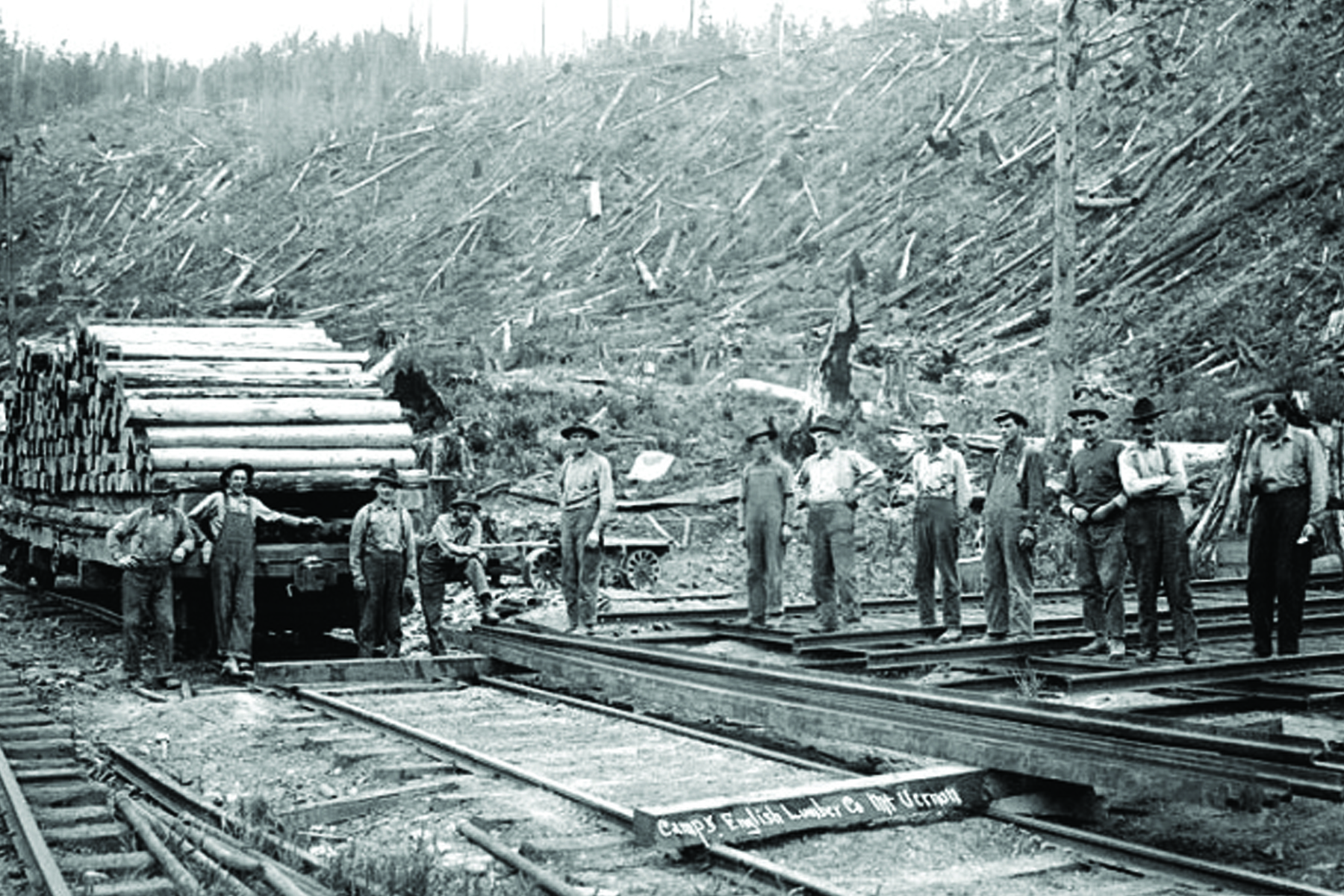 English Camp 5 crews clear-cut the park area, circa 1915. The Little Mountain forest has been regrowing for the last century.