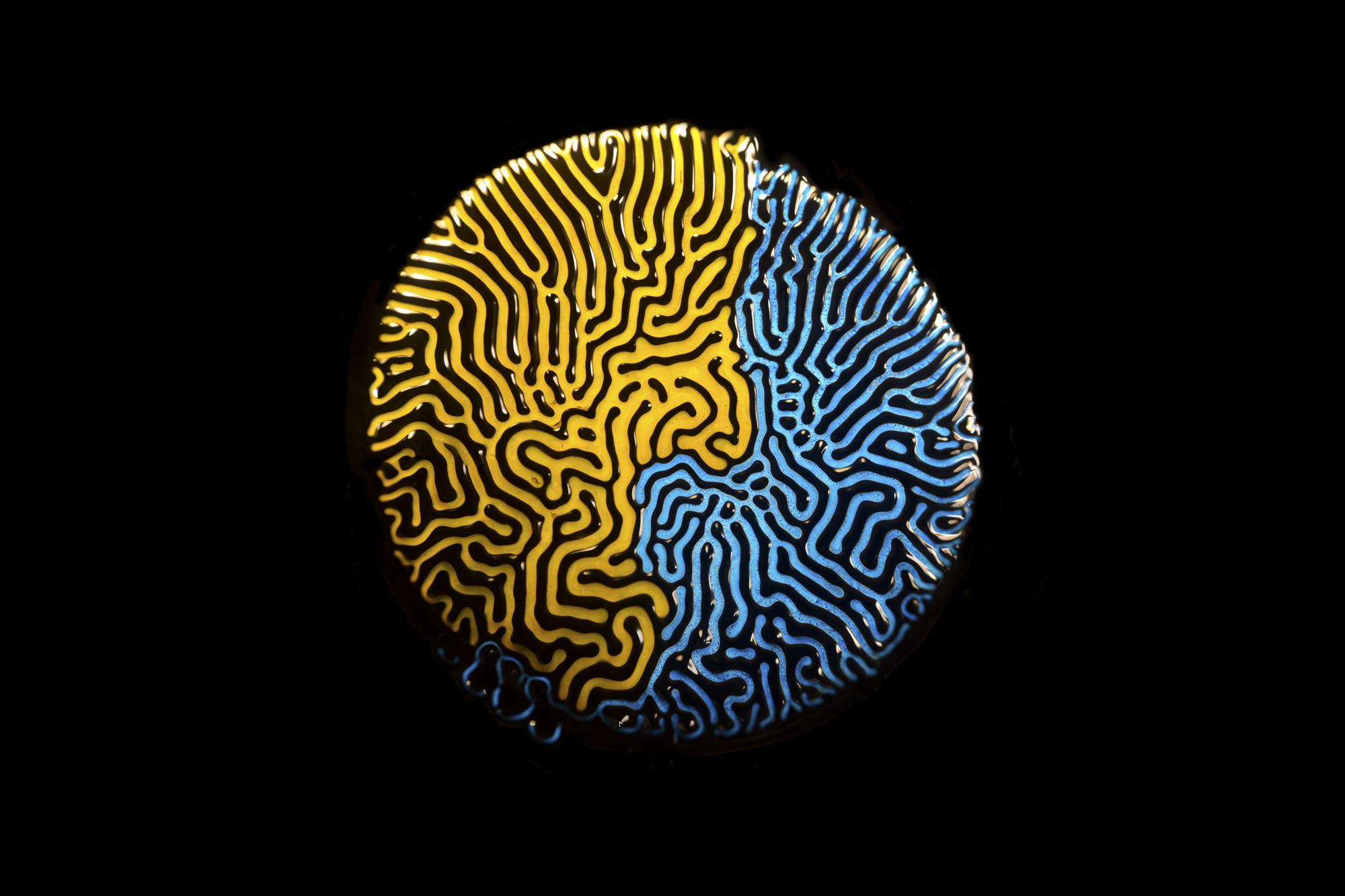 Ferrofluid 6