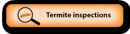 Termite inspections South Burnett