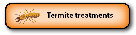 Termite treatments South Burnett