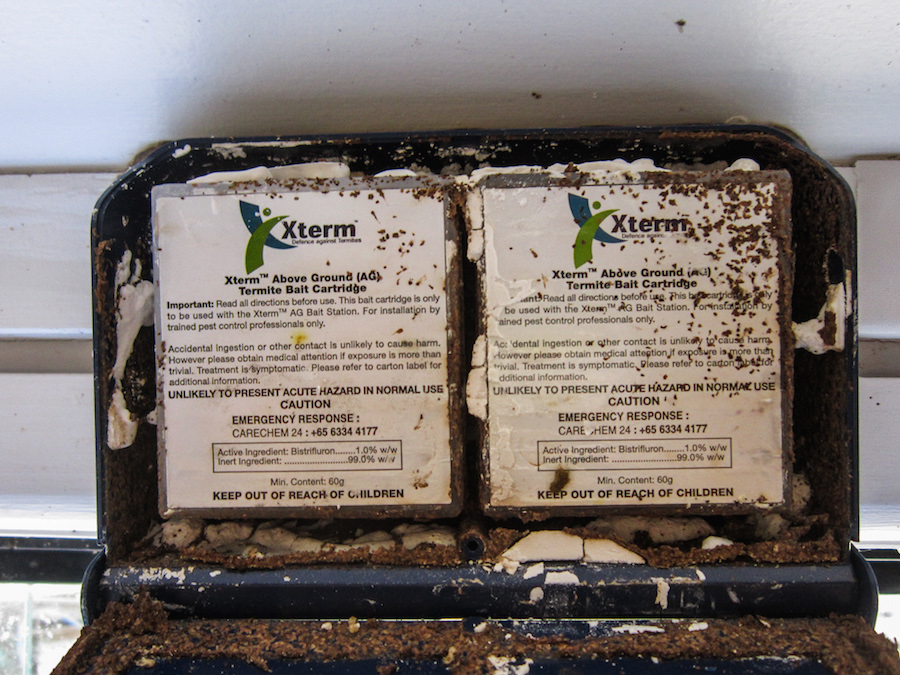 Termite baits are often used to eliminate active termites from buildings - they also kill the nest