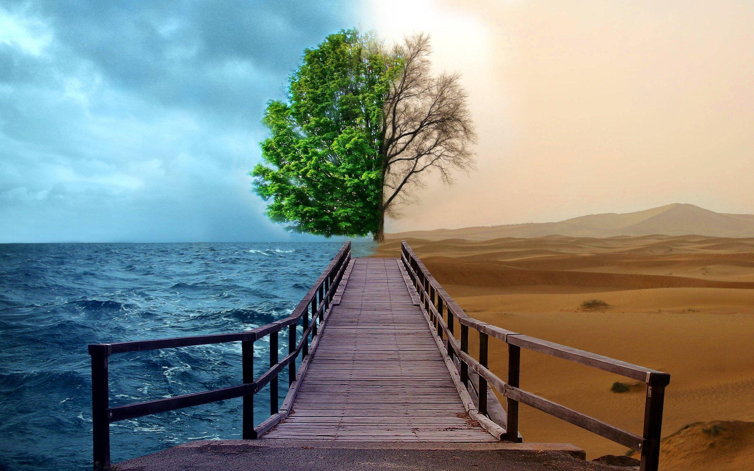 Life Transitions.jpg