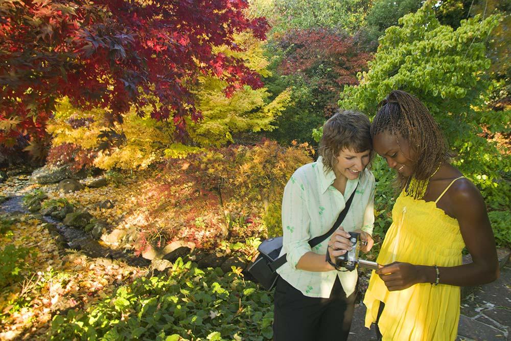 2008-Kaydale-Lodge-Gardens-(Autumn),-Nietta.jpg