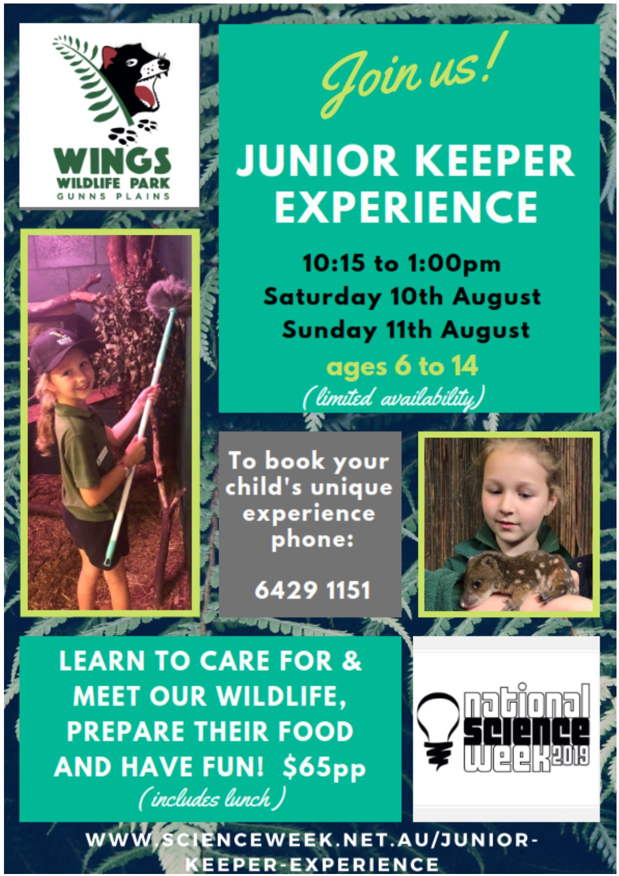 20190811 Junior Keeper Experience.jpg