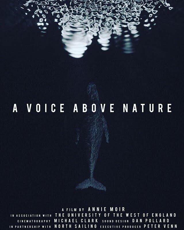 A Voice Above Nature - Annie Moir  Sound Designer and Cetacean Cymatics