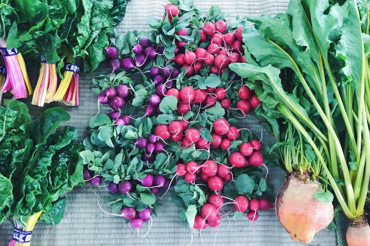 こんにちは☺︎    いつもの如く忘れかけた頃の不意打ち狙い!の鎌倉ブログ (どーゆー事でしょうか)      今日は大切な食卓を飾る食材編です    何を食べているか見ればその人がどんな人かがわかると言われている程「食」の影響は大きく、当たり前の事ですが私たちは食べたもので出来ています     そして地産地消ができる豊かさも鎌倉暮らしの心地よさです         実際に通っている3店をどうぞ〜  会うかもしれません〜             ○レンバイ (鎌倉市農協連即売所)   http://kamakurarenbai.com/     鎌倉の食材といえば鎌倉野菜!    東口から歩いて5分、海へ向かう大通り沿い左手にあるレンバイ    ここはもぅ外せない  どの鎌倉ブログにも出てくると思いますがもぅ外せない    レストランのシェフ達もここで仕入れている率が高い大人気の定番の場所です       8時からオープンしているのでなるべく午前中を狙って行き、新鮮で珍しい野菜を眺めスタッフの方へ料理法を聞いたりと楽しい空間    よく買うのは便利な温野菜セットで、たくさんの種類の野菜が少しずつ入っていてスープやキッチャリーに使ったりと万能で本当にオススメ    日によって農協さんが変わるので温野菜セットがない日もありますが、お気に入りの班が出来たらカレンダーでチェックしてみて下さい      野菜売り場以外にも、人気のパン屋さんパラダイスアレイや鎌倉シフォンケーキ、美味しそうな干物屋、燻製のお店、オシャレな雑貨屋さんもありぐるっと一回りすると満足感高し 笑