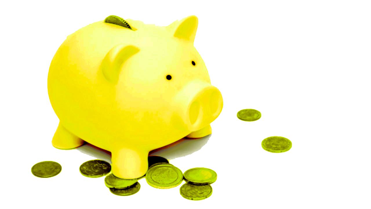 Piggy bank  copy.jpg