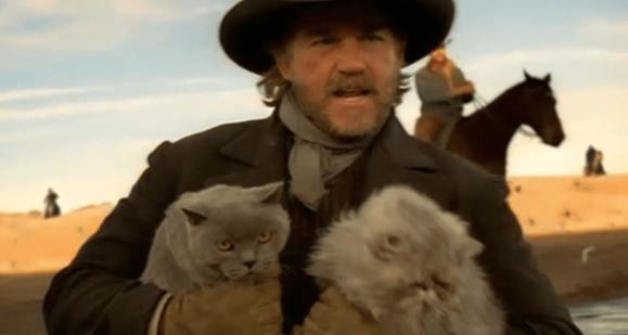herding cats 2 (2).png
