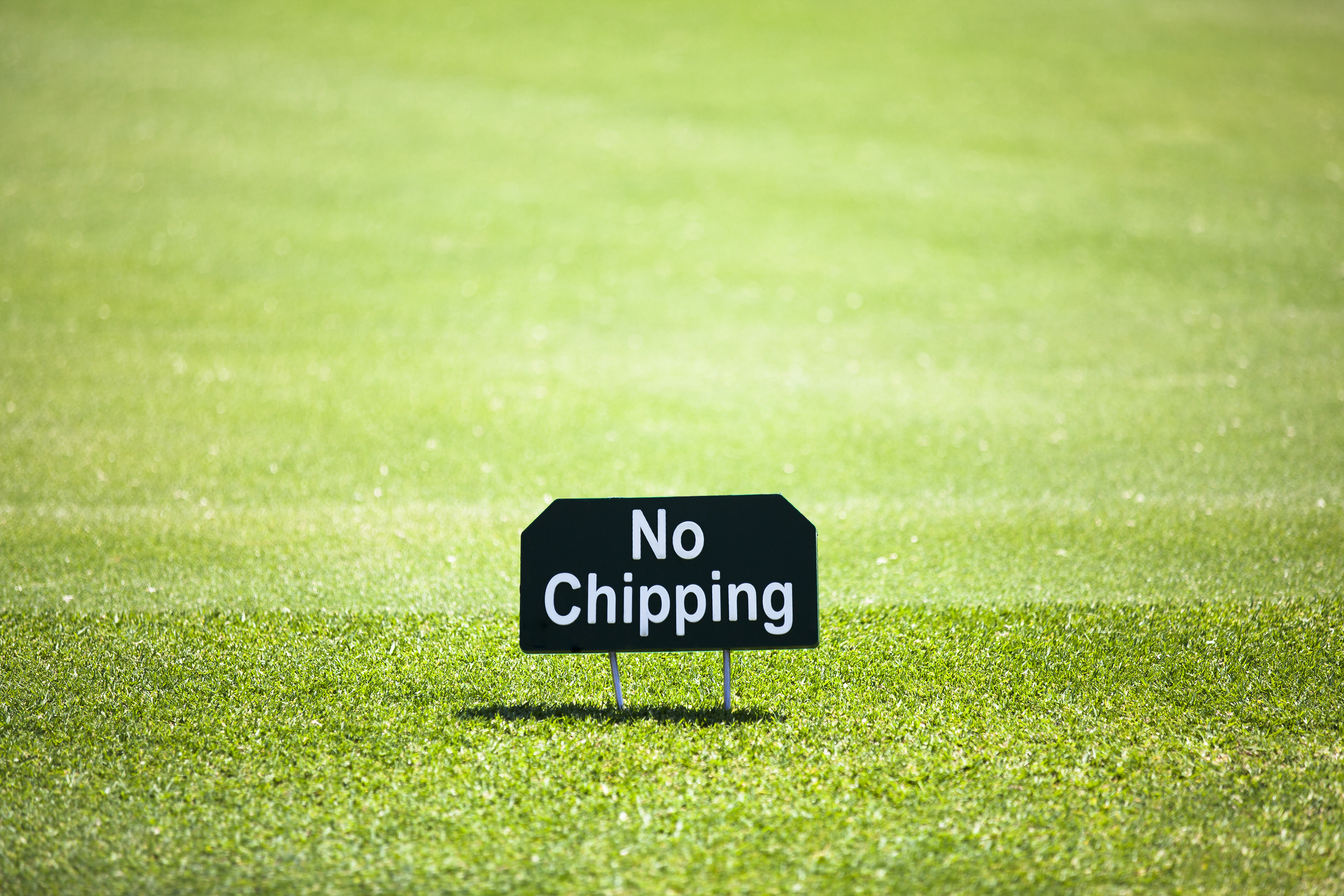 Get over the chip yips with Limitless golf based in Chesham and Amersham.