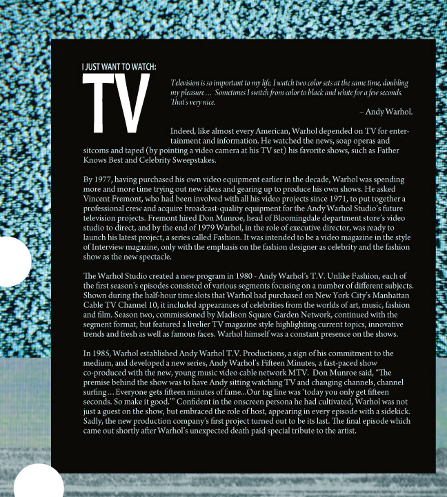 TV-exhibition-panel.jpg