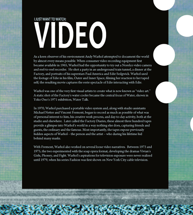 VIDEO-exhibition-panel.jpg