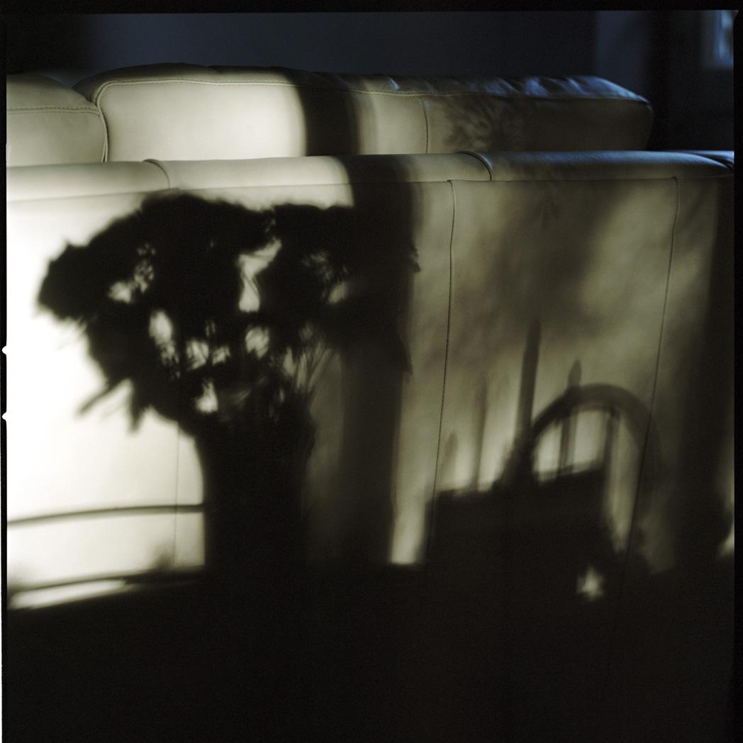 Shadow2edit_1.jpg