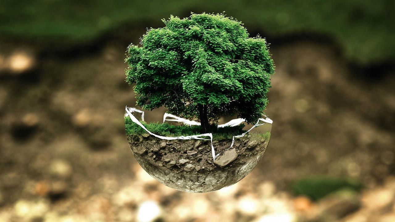 Por cada colgante un árbol crecerá en tu nombre.