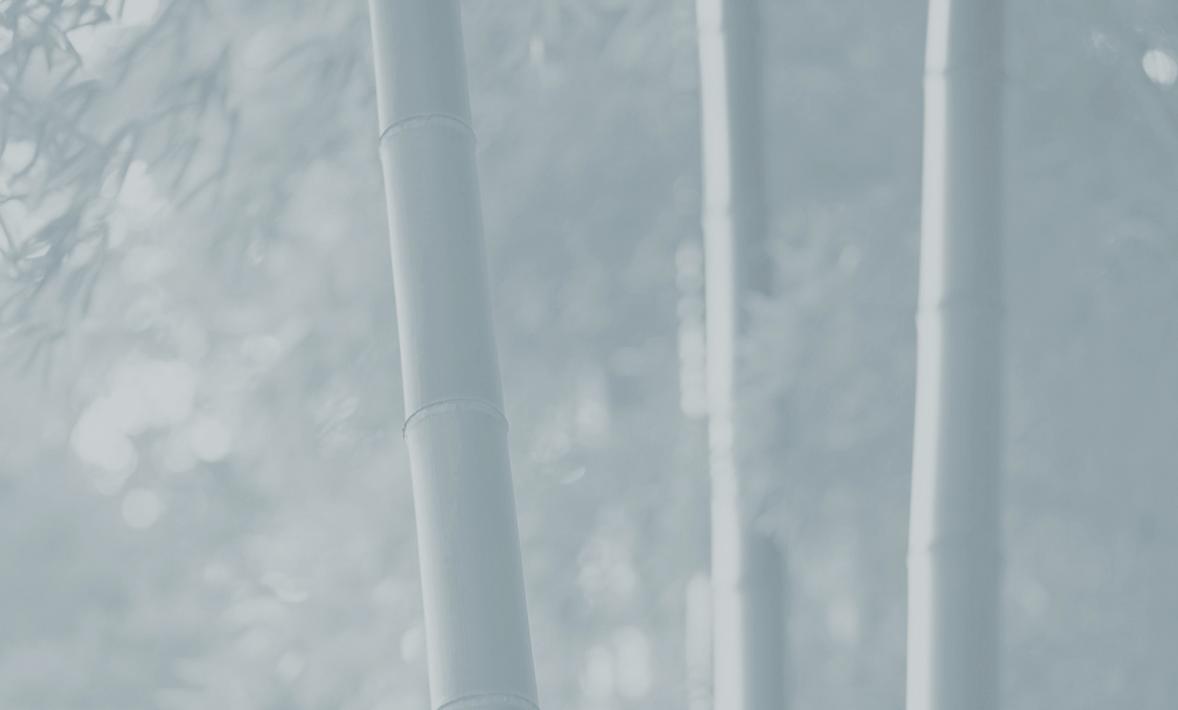 Bambú - Descubre los detalles de cómo usar prendas de bambú puede ayudar a proteger el medio ambiente en nuestra mini guía de ropa de bambú.