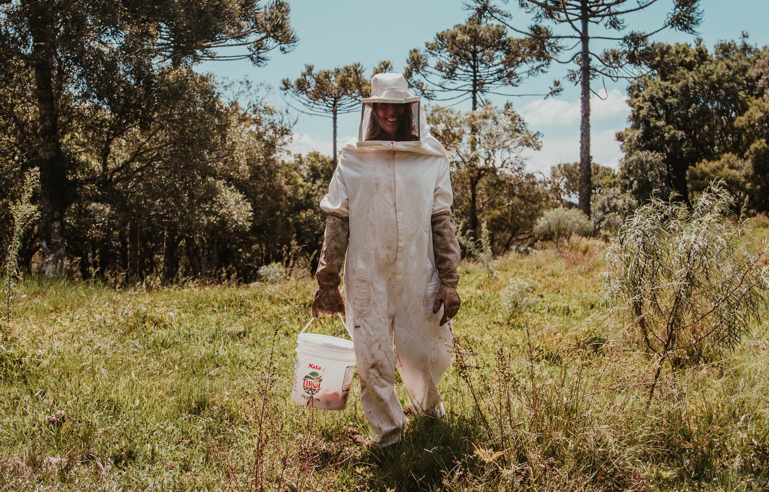How can we save the bees? -