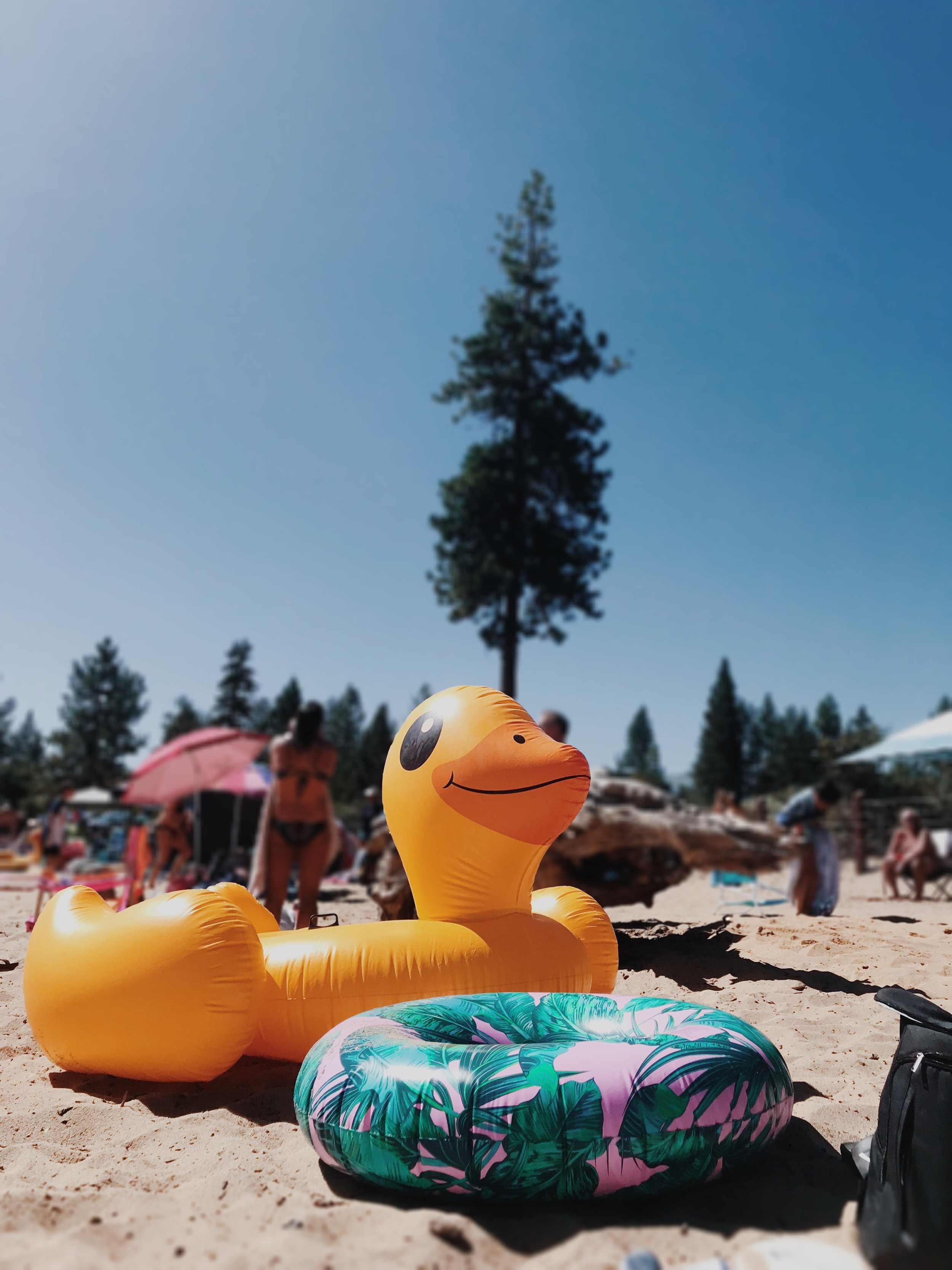 our floatie game: strong.