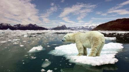 Stop Global Warming Belfast