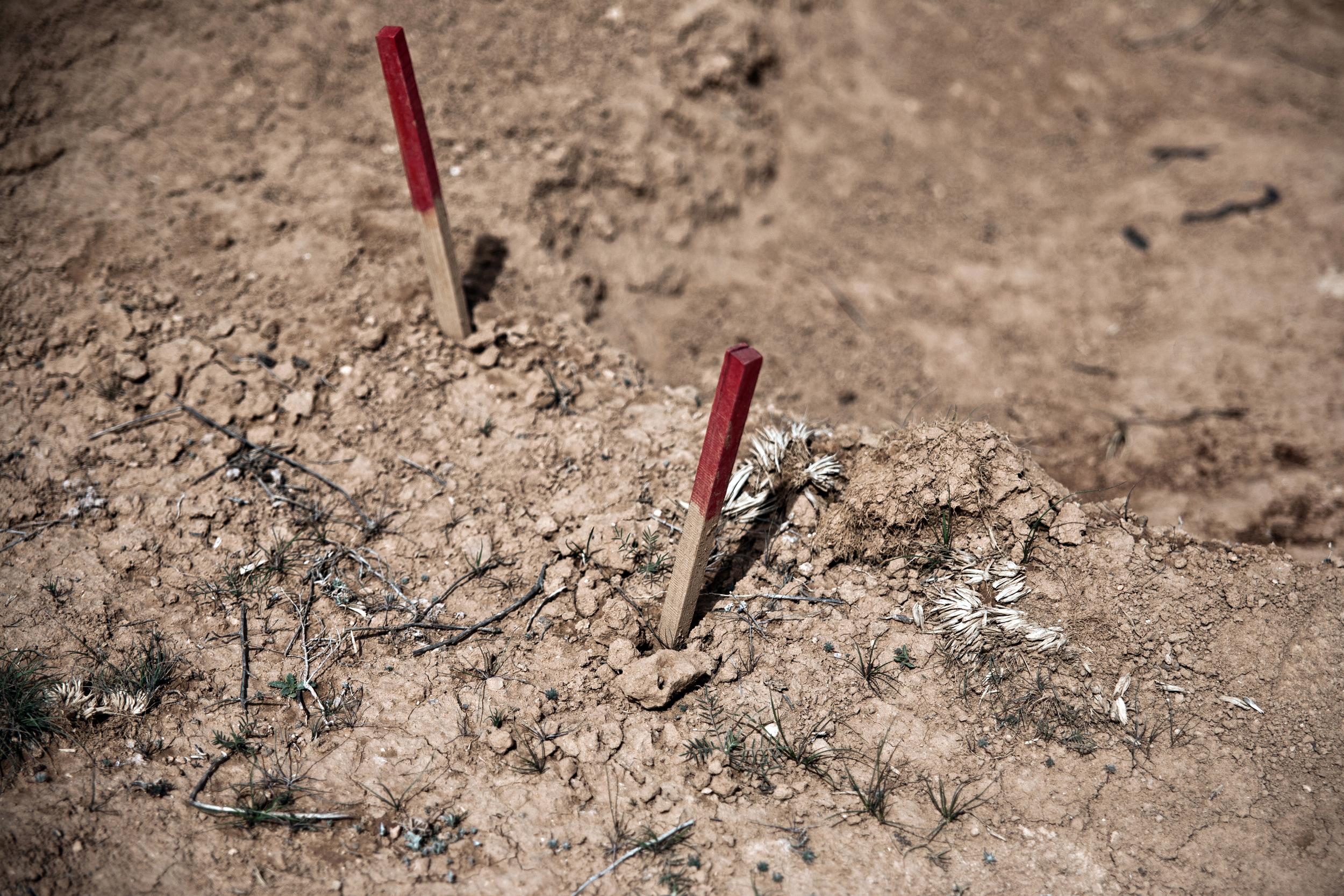 Jordan - The Female Demining Team 21.jpg