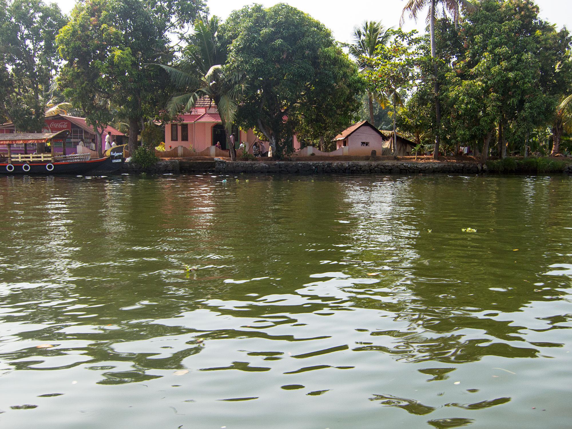 Shore of the Kerala backwater.