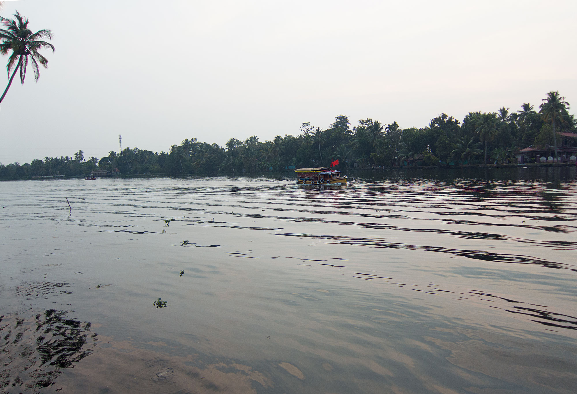 View of the river at dusk.
