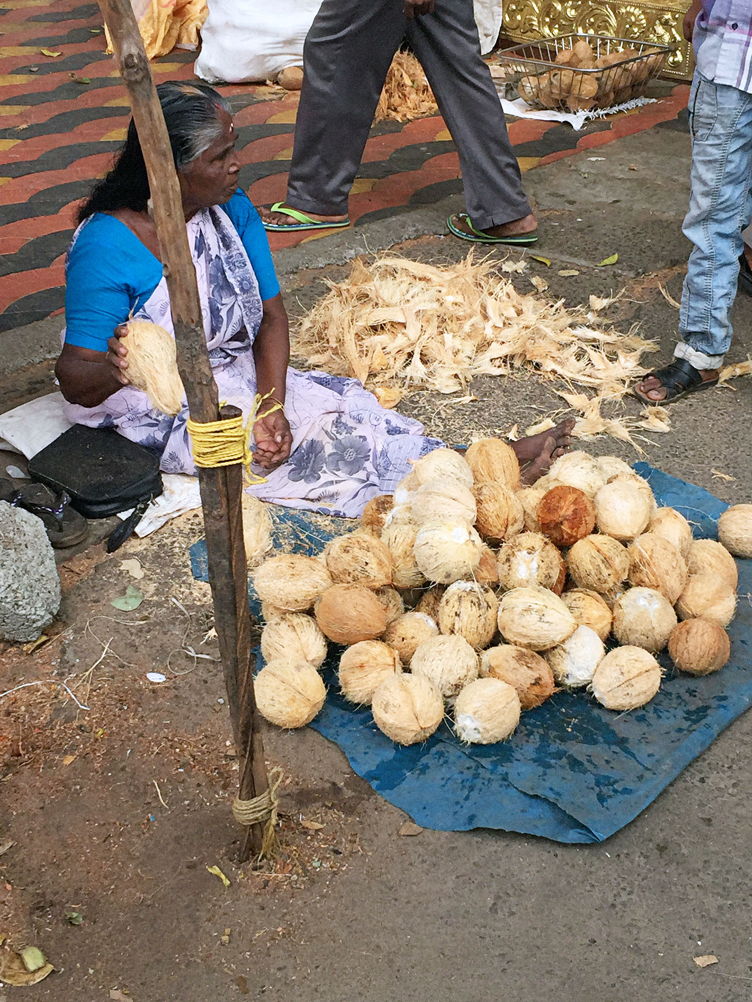 Coconut wallah in Alleppey.