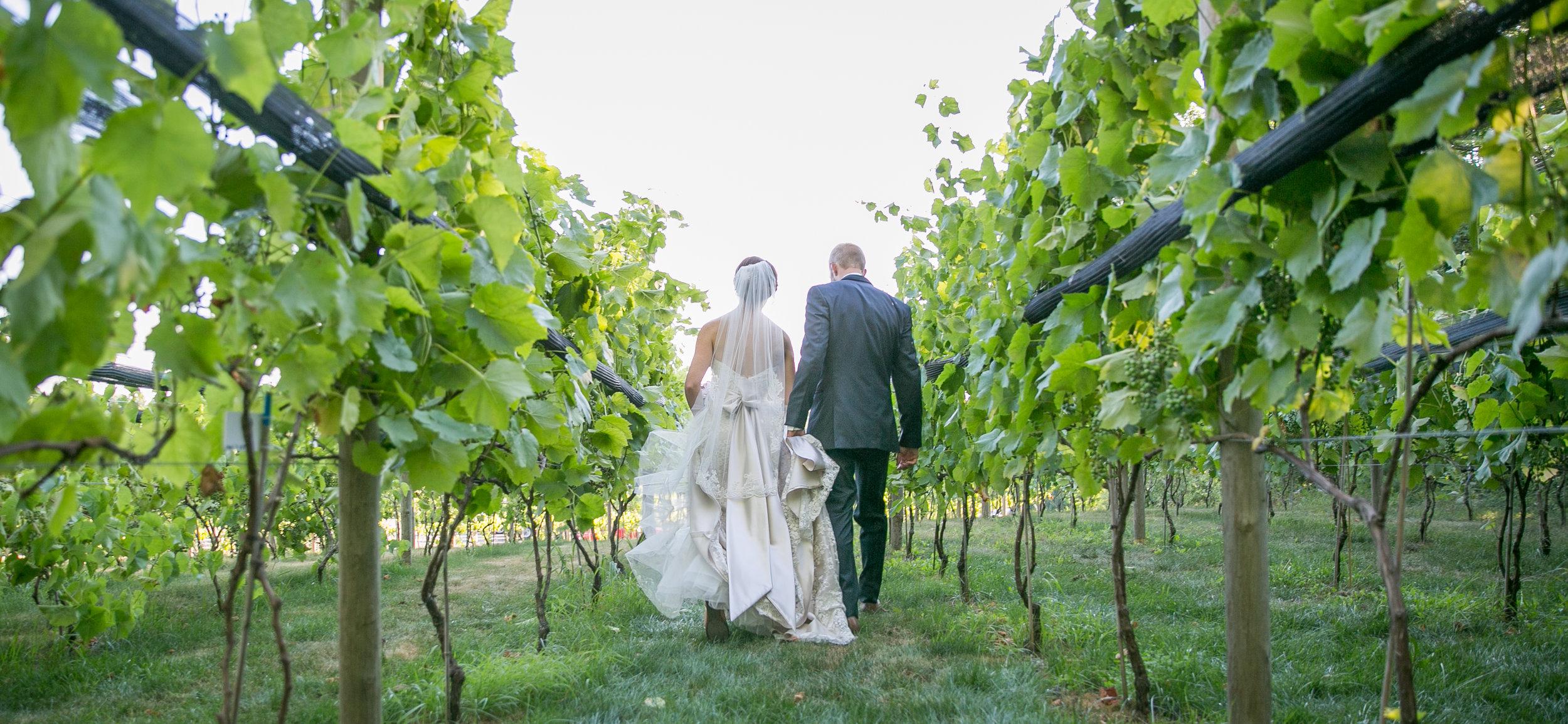 vineyard-wedding-8381.jpg