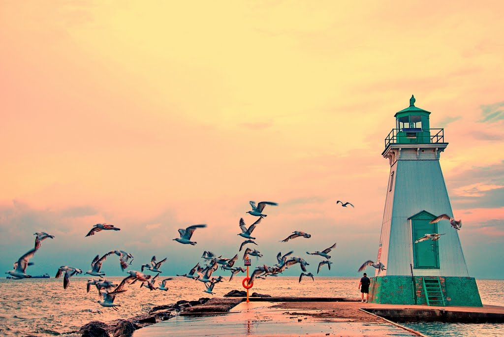Photographer:Joseph P. Falcone   St. Catherine's, Ontario / 2 hours and 2 minutes from Toronto