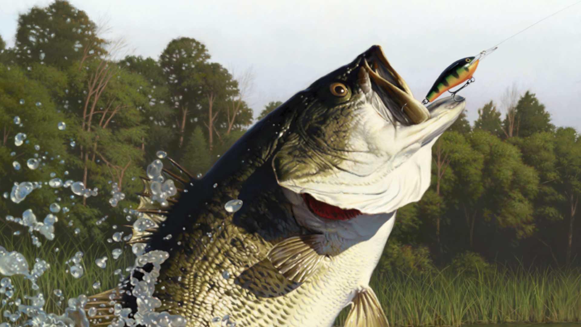 Rapala Fishing Pro Series Review Darkstation
