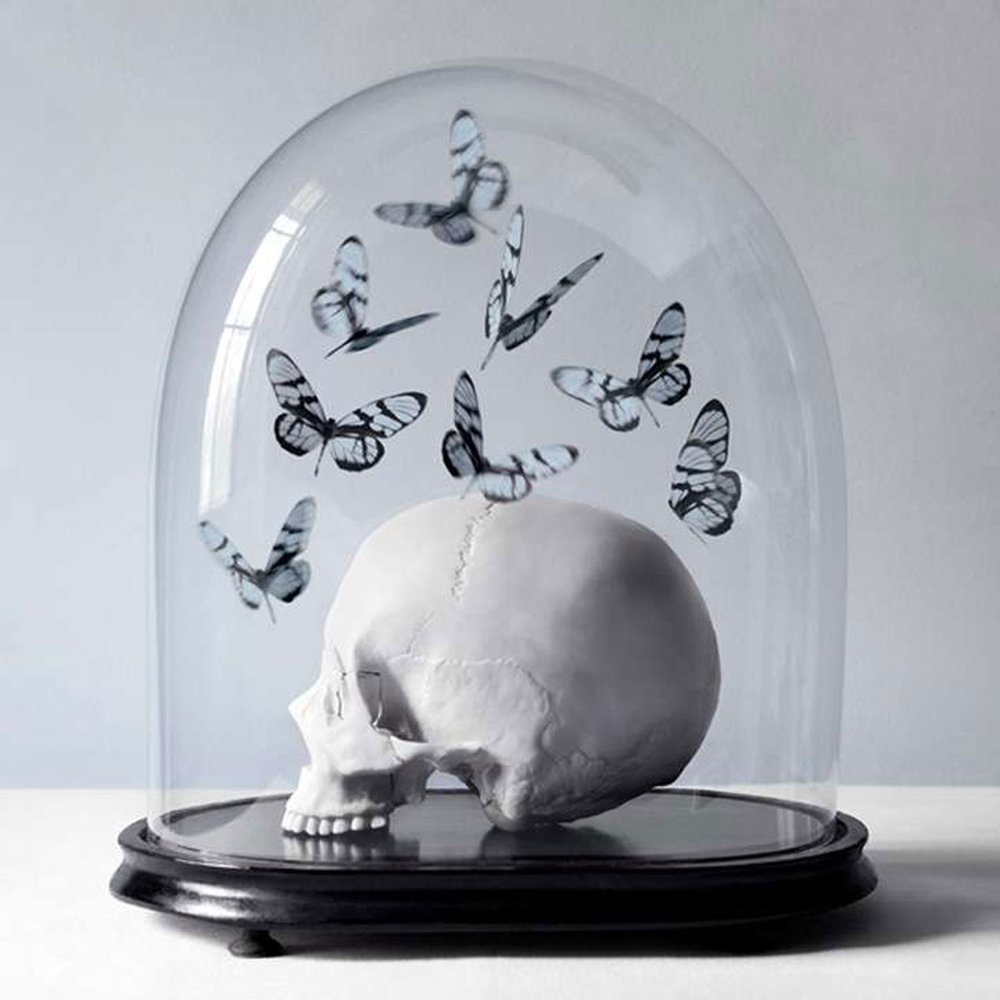 Add a classy touch to a side table or mantle with a spooky cloche display (via TrendHunter)