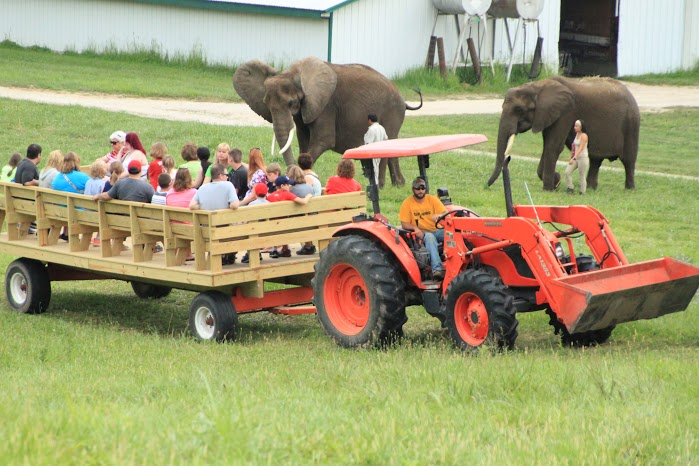 French Lick_Wilstem Ranch - Elephant Retreat.jpg
