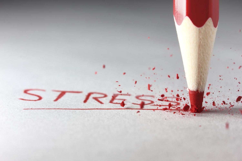 stress 4.jpg