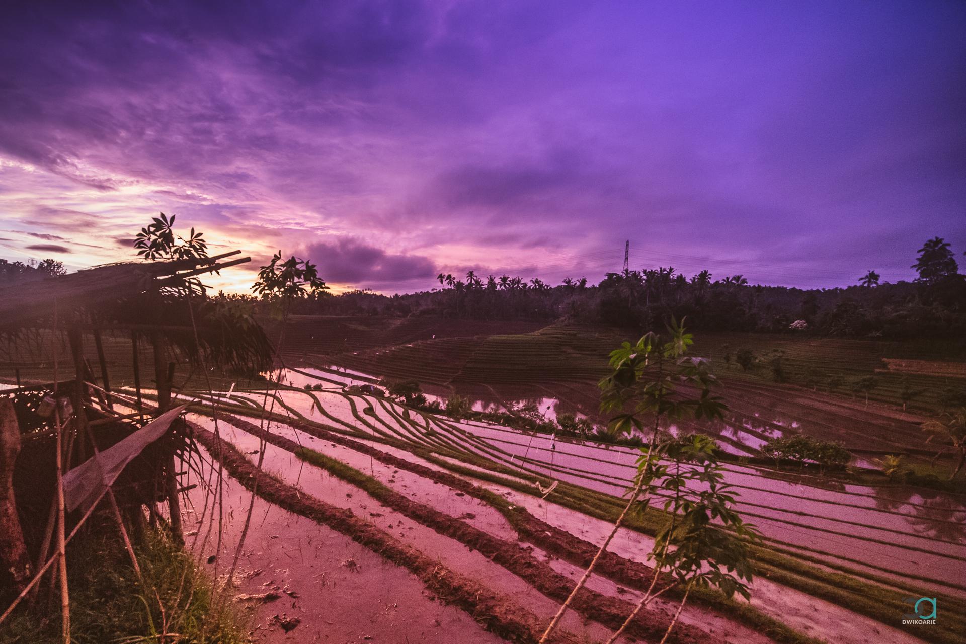 0008 Bali Kawah Ijen Indonesia Jawa Photography - IMG_0732.jpg