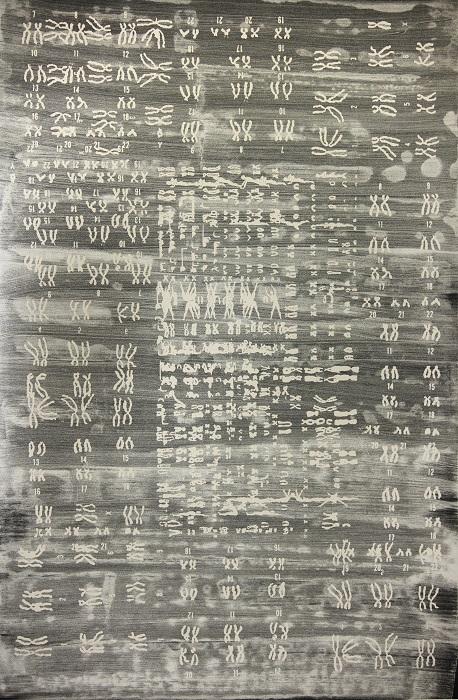 Suzanne Anker, Symbolic Species