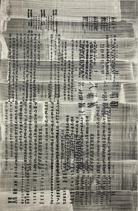 Suzanne Anker, Scriptography II