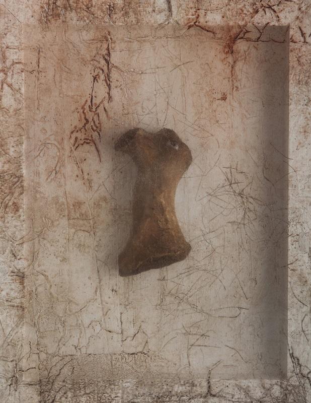 Remnant (Walrus Bone), 2016