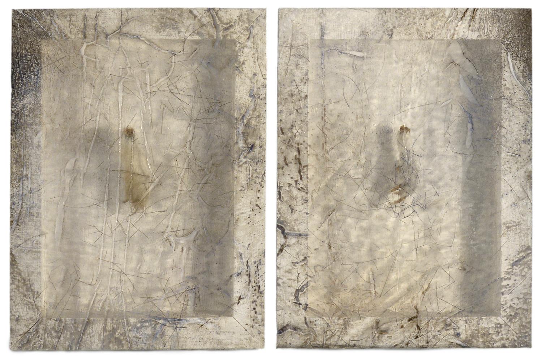 Sonya Kelliher-Combs, Remnant (Bird Feet), 2016