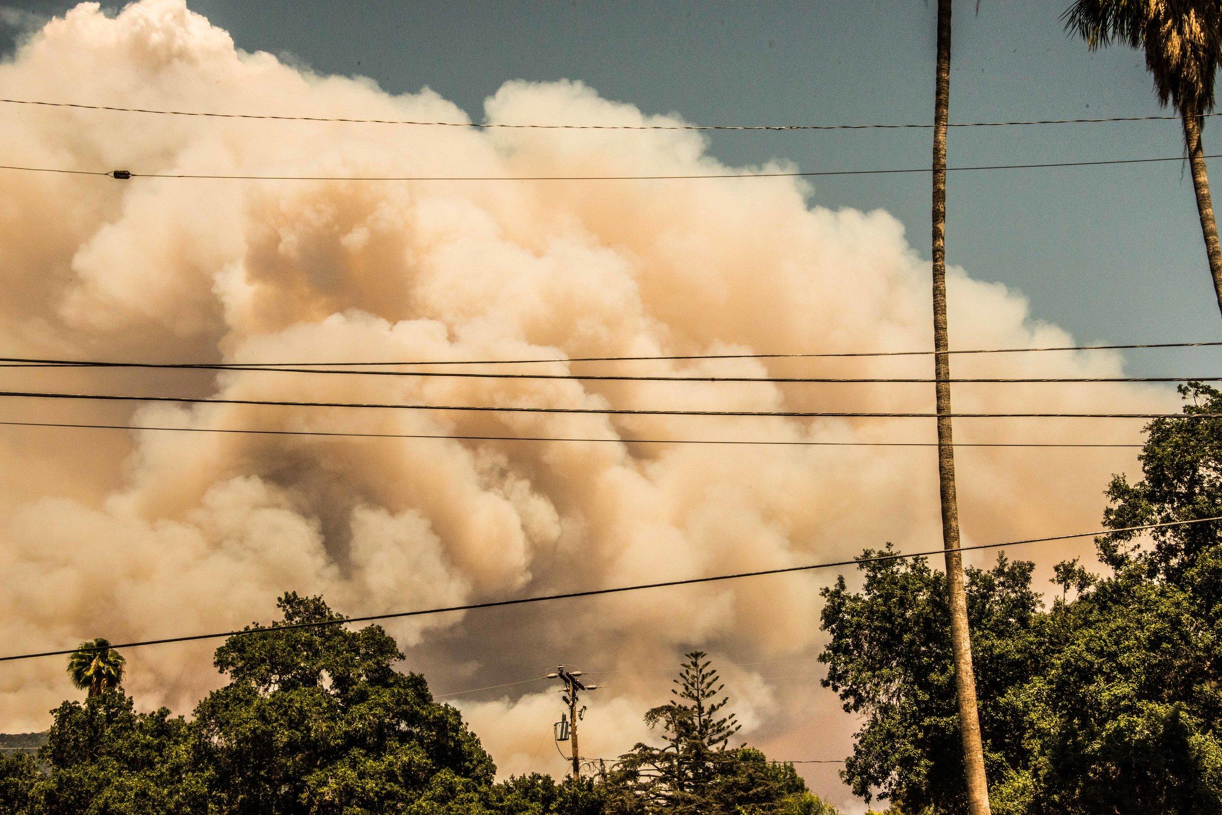 Fire with Trees, Monrovia, California, 2016