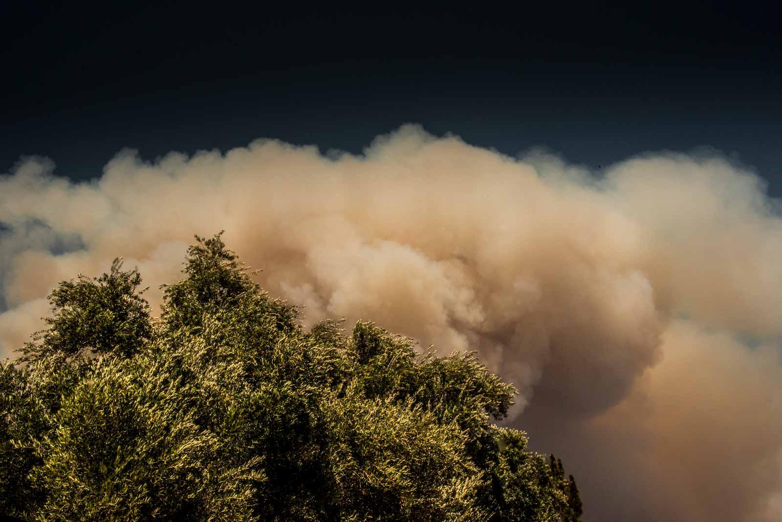 Fire in Monrovia, Tree California, 2016