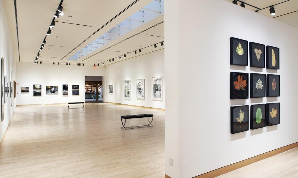 Rubenstein-Installation-2-Santa-Fe-Art-Gallery.jpg