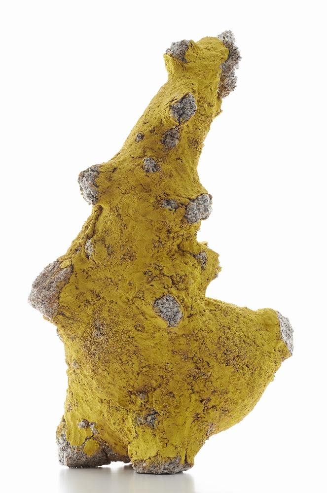 Aneta Regel, Yellow Form, 2013