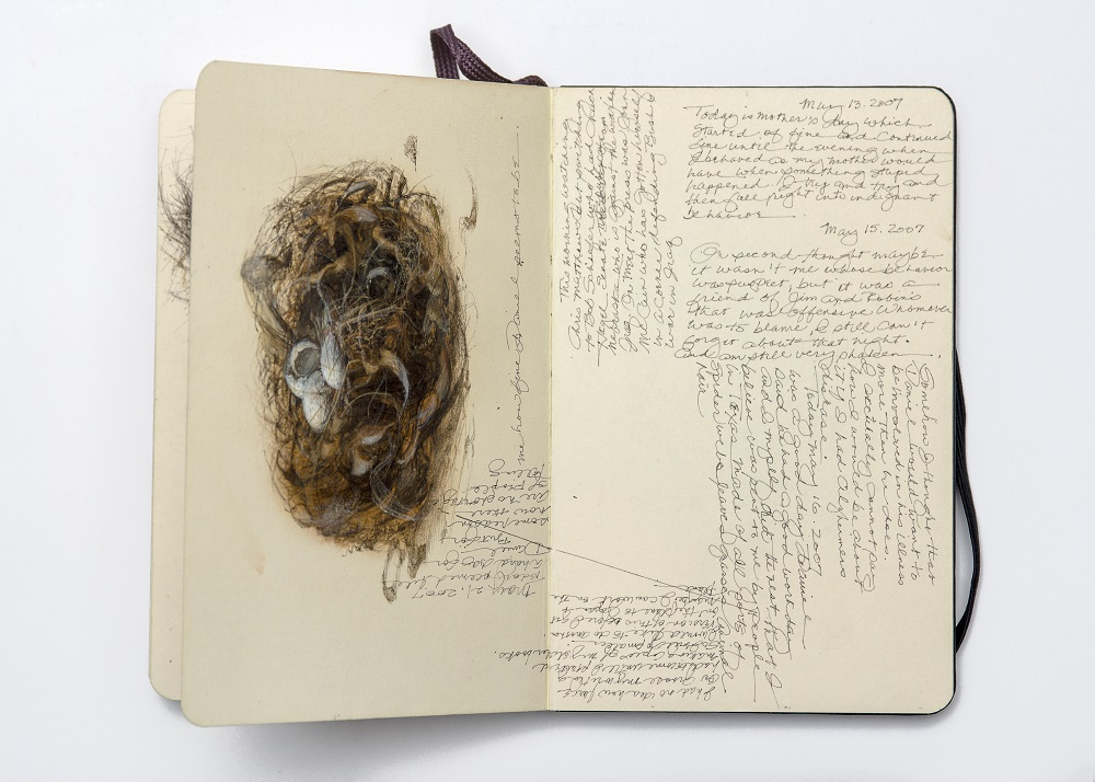 Carol Mothner, Artist's Journal: Bird's Nest