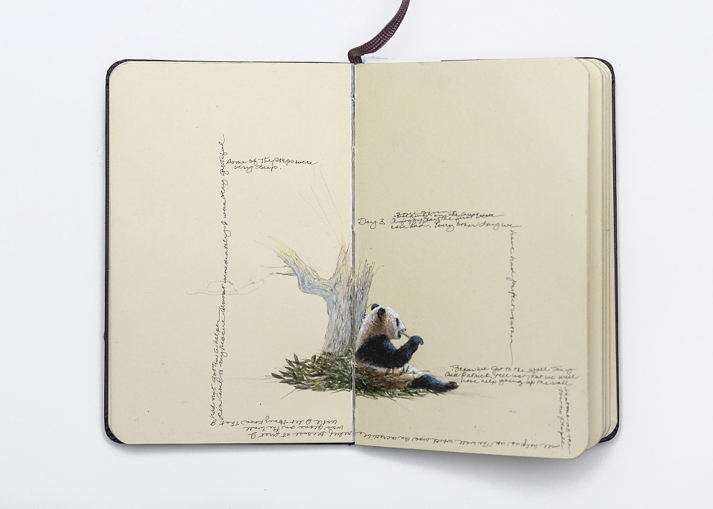Carol Mothner, Artist's Journal: Panda