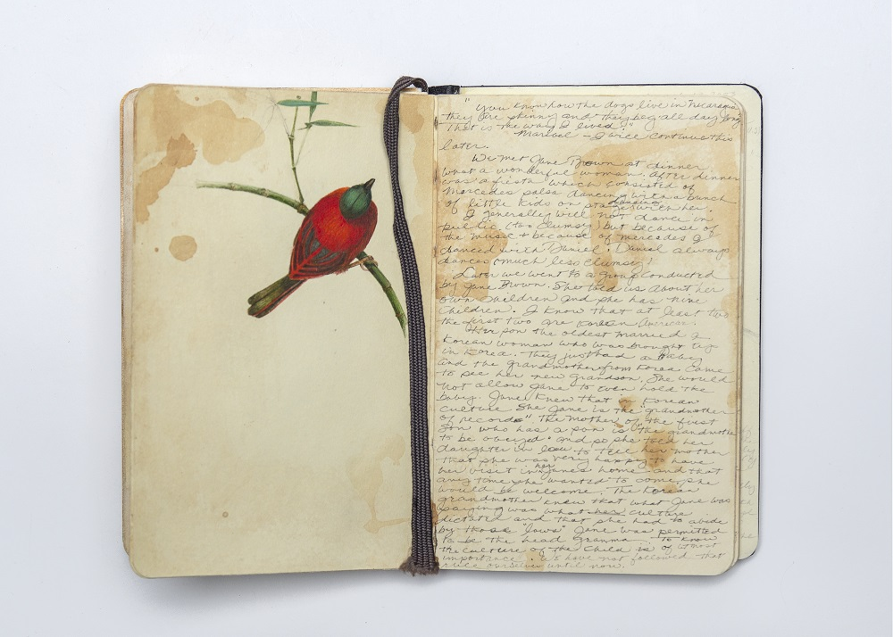 Carol Mothner, Artist's Journal: Red Bird